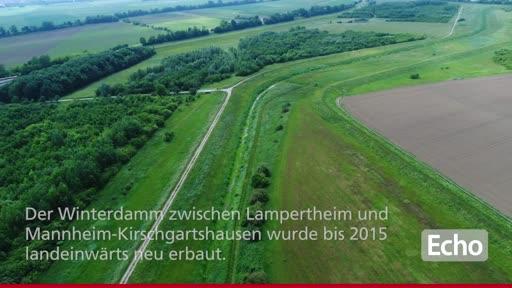 fällt kennenlernen mannheim deutschland online