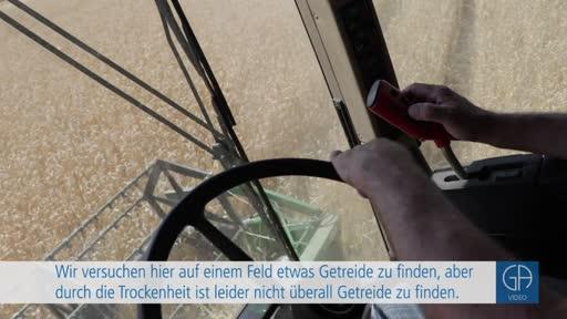 Trockenheit sorgt für schlechte Ernte im Kreis Gießen