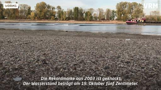 Ein Fluss trocknet aus: Kaum noch Wasser im Rhein